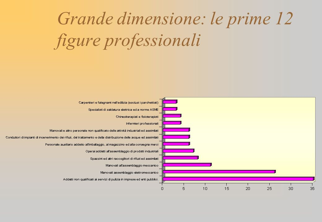 Grande dimensione: le prime 12 figure professionali