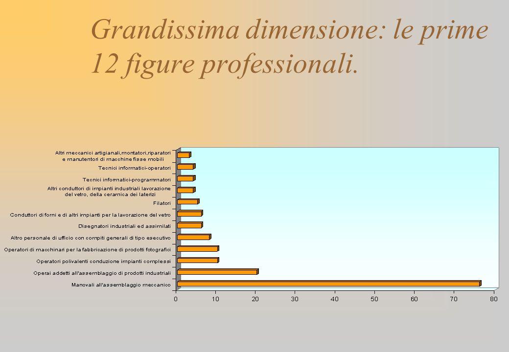 Grandissima dimensione: le prime 12 figure professionali.