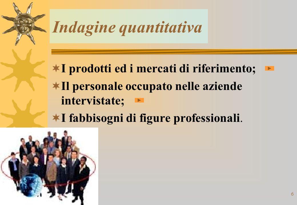 6 Indagine quantitativa I prodotti ed i mercati di riferimento; Il personale occupato nelle aziende intervistate; I fabbisogni di figure professionali.