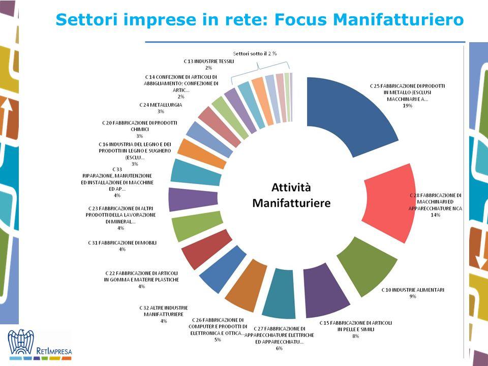 11 Settori imprese in rete: Focus Manifatturiero