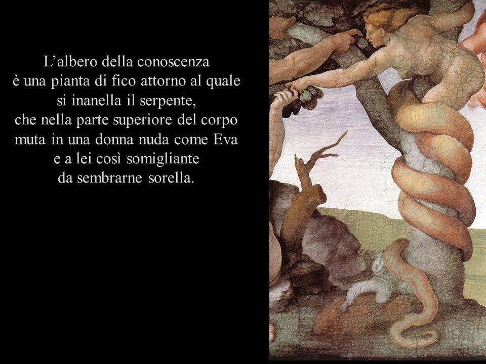 Lalbero della conoscenza è una pianta di fico attorno al quale si inanella il serpente, che nella parte superiore del corpo muta in una donna nuda com