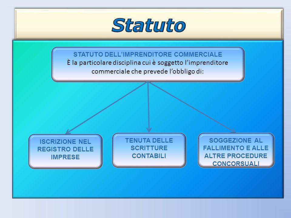 STATUTO DELLIMPRENDITORE COMMERCIALE È la particolare disciplina cui è soggetto limprenditore commerciale che prevede lobbligo di: ISCRIZIONE NEL REGI
