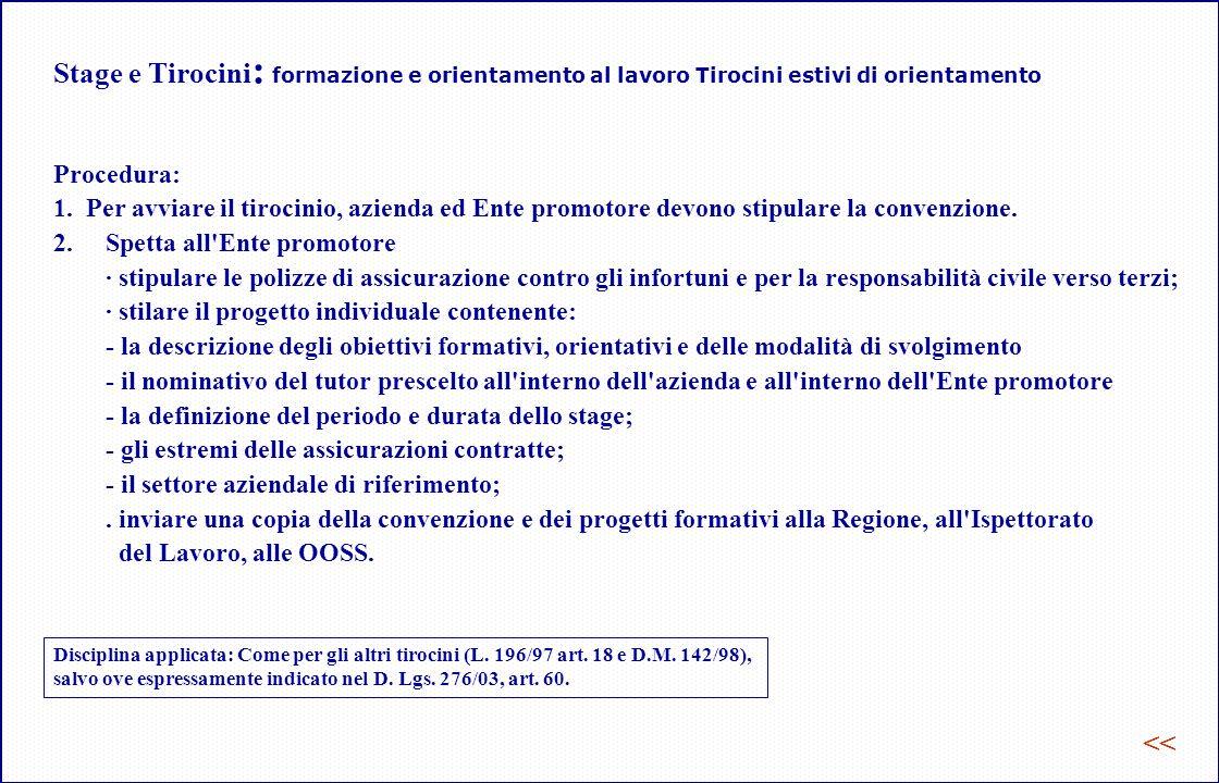 Stage e Tirocini : formazione e orientamento al lavoro Tirocini estivi di orientamento Procedura: 1.