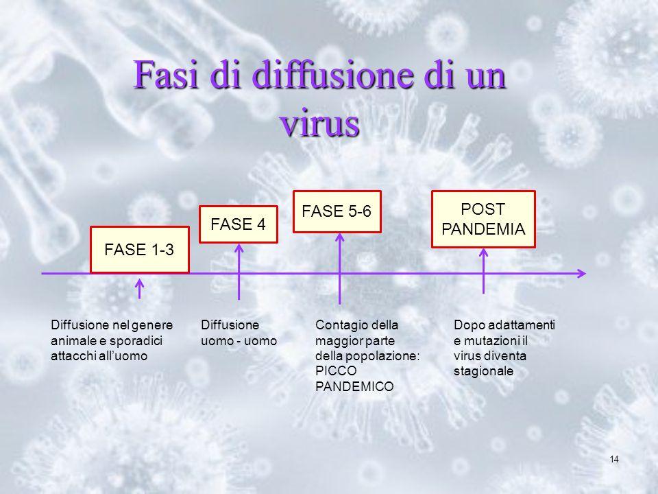 14 FASE 1-3 FASE 4 FASE 5-6 POST PANDEMIA Diffusione nel genere animale e sporadici attacchi alluomo Diffusione uomo - uomo Contagio della maggior par