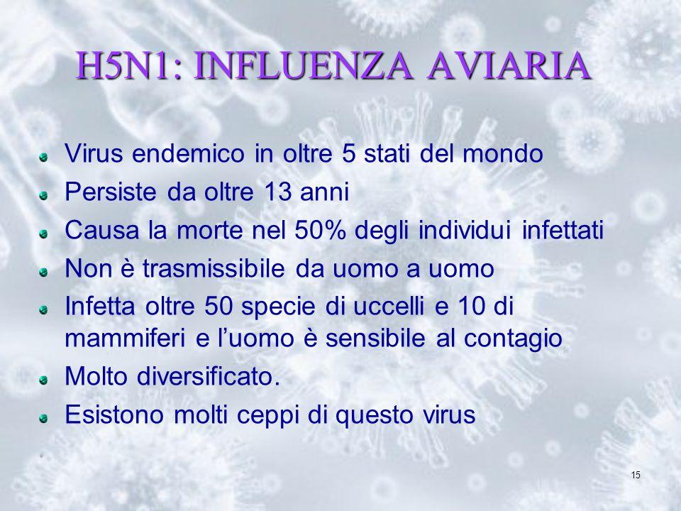 15 H5N1: INFLUENZA AVIARIA Virus endemico in oltre 5 stati del mondo Persiste da oltre 13 anni Causa la morte nel 50% degli individui infettati Non è