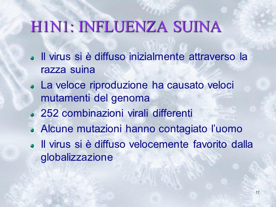 17 H1N1: INFLUENZA SUINA Il virus si è diffuso inizialmente attraverso la razza suina La veloce riproduzione ha causato veloci mutamenti del genoma 25