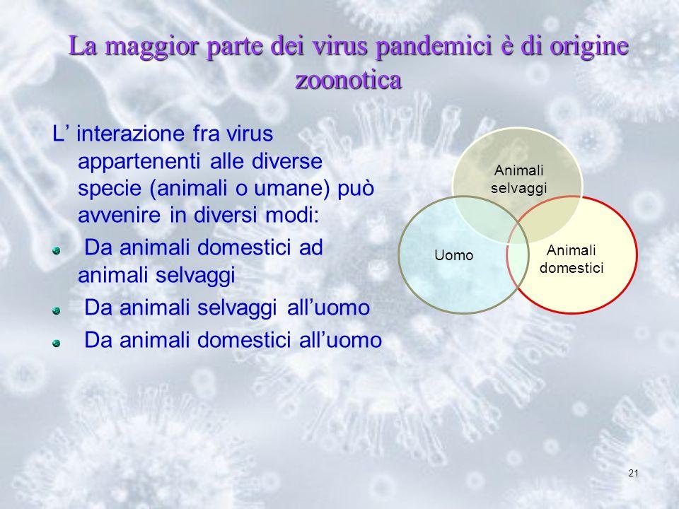 21 La maggior parte dei virus pandemici è di origine zoonotica L interazione fra virus appartenenti alle diverse specie (animali o umane) può avvenire