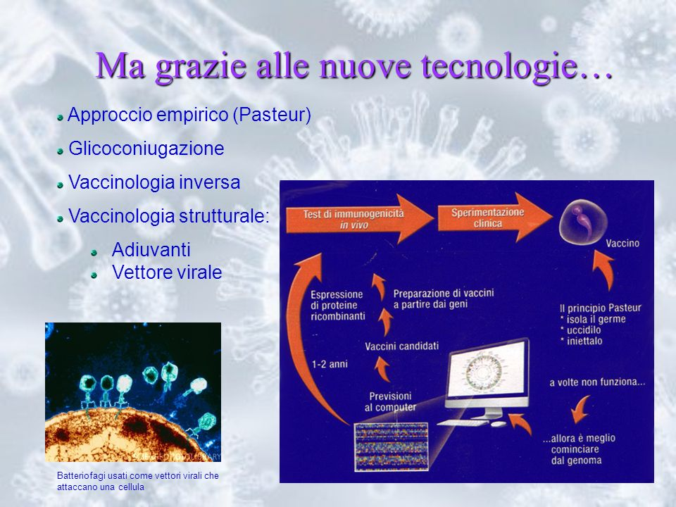 30 Ma grazie alle nuove tecnologie… Approccio empirico (Pasteur) Glicoconiugazione Vaccinologia inversa Vaccinologia strutturale: Adiuvanti Vettore vi