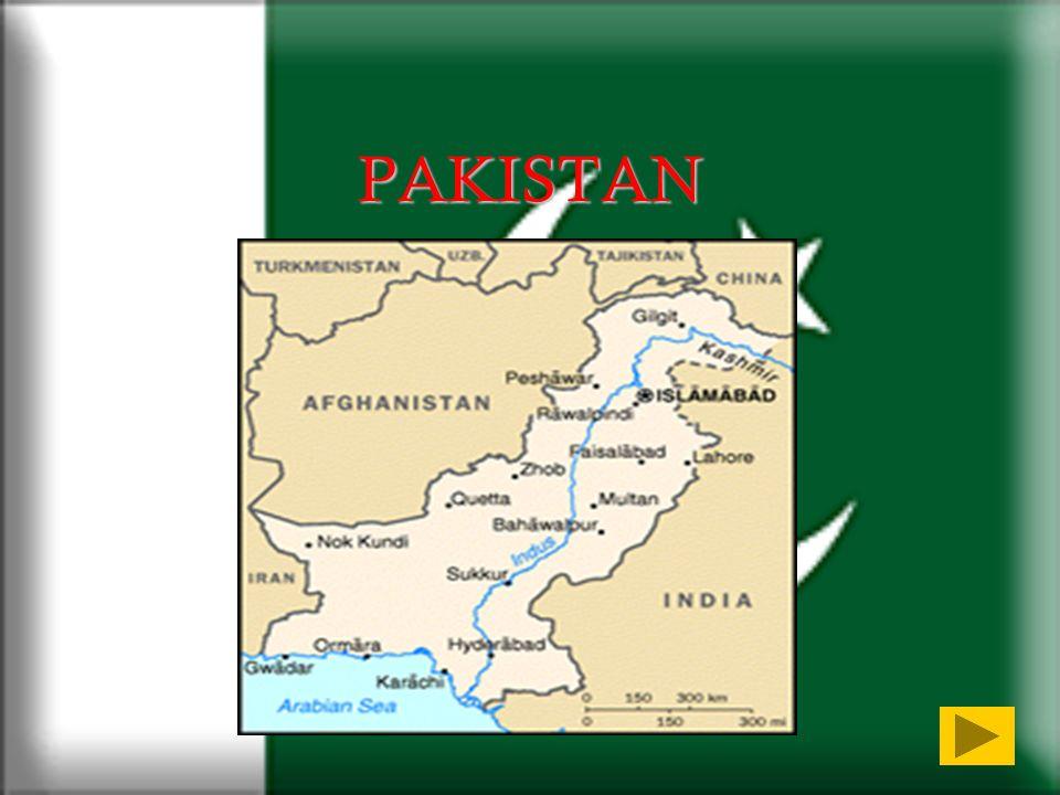 SERVITU DA DEBITO Un inviato speciale delle Nazioni Unite ha affermato che in Pakistan la tortura di chi è nelle mani della polizia è diffusa e sistematica, viene inflitta per punire, intimidire, ottenere informazioni, estorcere denaro.