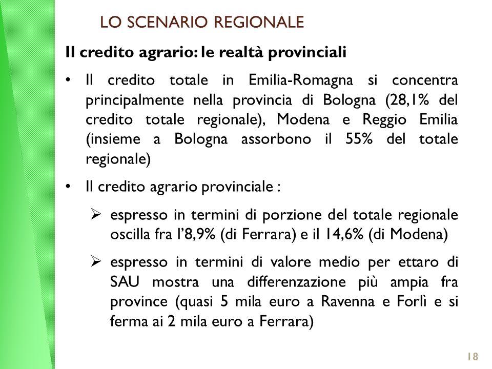 LO SCENARIO REGIONALE Il credito agrario: le realtà provinciali Il credito totale in Emilia-Romagna si concentra principalmente nella provincia di Bologna (28,1% del credito totale regionale), Modena e Reggio Emilia (insieme a Bologna assorbono il 55% del totale regionale) Il credito agrario provinciale : espresso in termini di porzione del totale regionale oscilla fra l8,9% (di Ferrara) e il 14,6% (di Modena) espresso in termini di valore medio per ettaro di SAU mostra una differenzazione più ampia fra province (quasi 5 mila euro a Ravenna e Forlì e si ferma ai 2 mila euro a Ferrara) 18