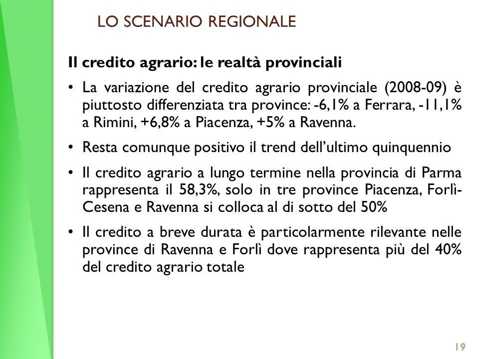 Il credito agrario: le realtà provinciali La variazione del credito agrario provinciale (2008-09) è piuttosto differenziata tra province: -6,1% a Ferrara, -11,1% a Rimini, +6,8% a Piacenza, +5% a Ravenna.