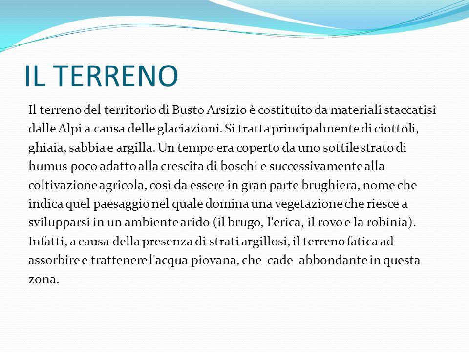 IL TERRENO Il terreno del territorio di Busto Arsizio è costituito da materiali staccatisi dalle Alpi a causa delle glaciazioni. Si tratta principalme