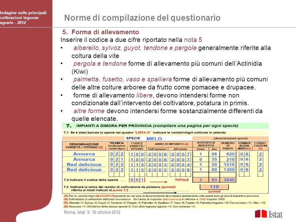 Norme di compilazione del questionario Indagine sulle principali coltivazioni legnose agrarie - 2012 Roma, Istat 9, 10 ottobre 2012 5. Forma di alleva