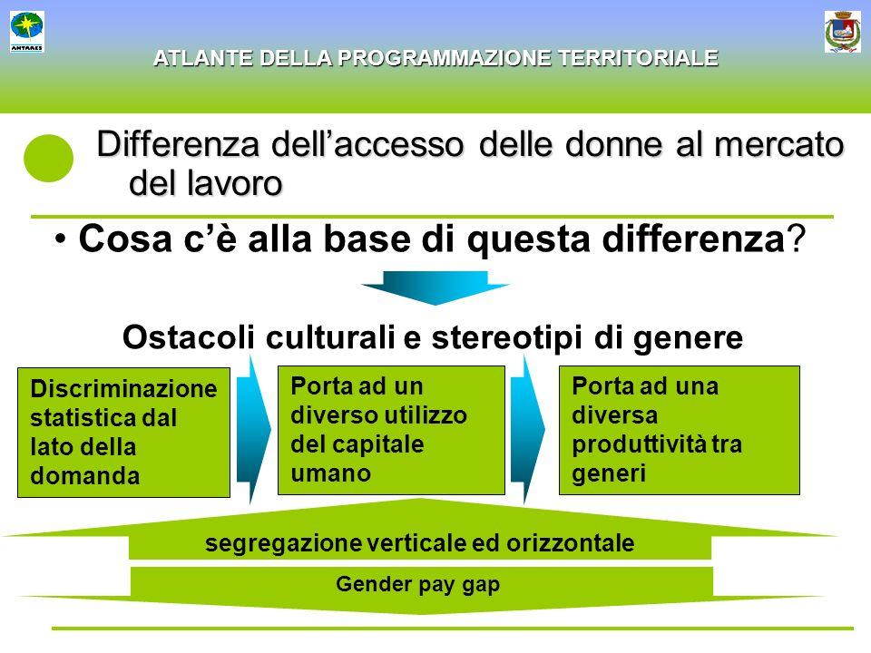 ATLANTE DELLA PROGRAMMAZIONE TERRITORIALE Differenza dellaccesso delle donne al mercato del lavoro Cosa cè alla base di questa differenza? Porta ad un