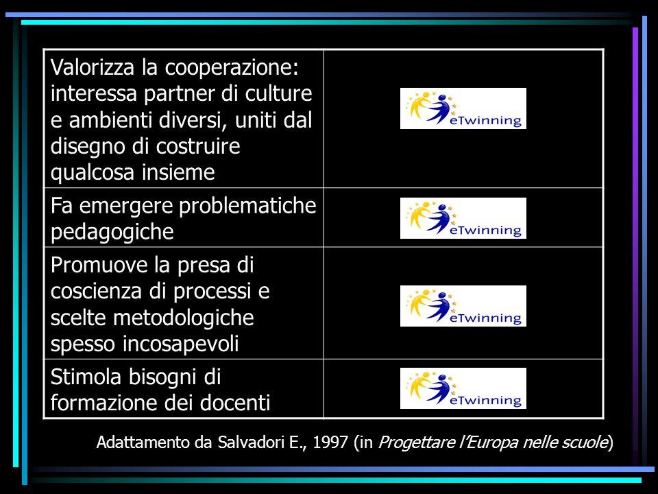 Valorizza la cooperazione: interessa partner di culture e ambienti diversi, uniti dal disegno di costruire qualcosa insieme Fa emergere problematiche