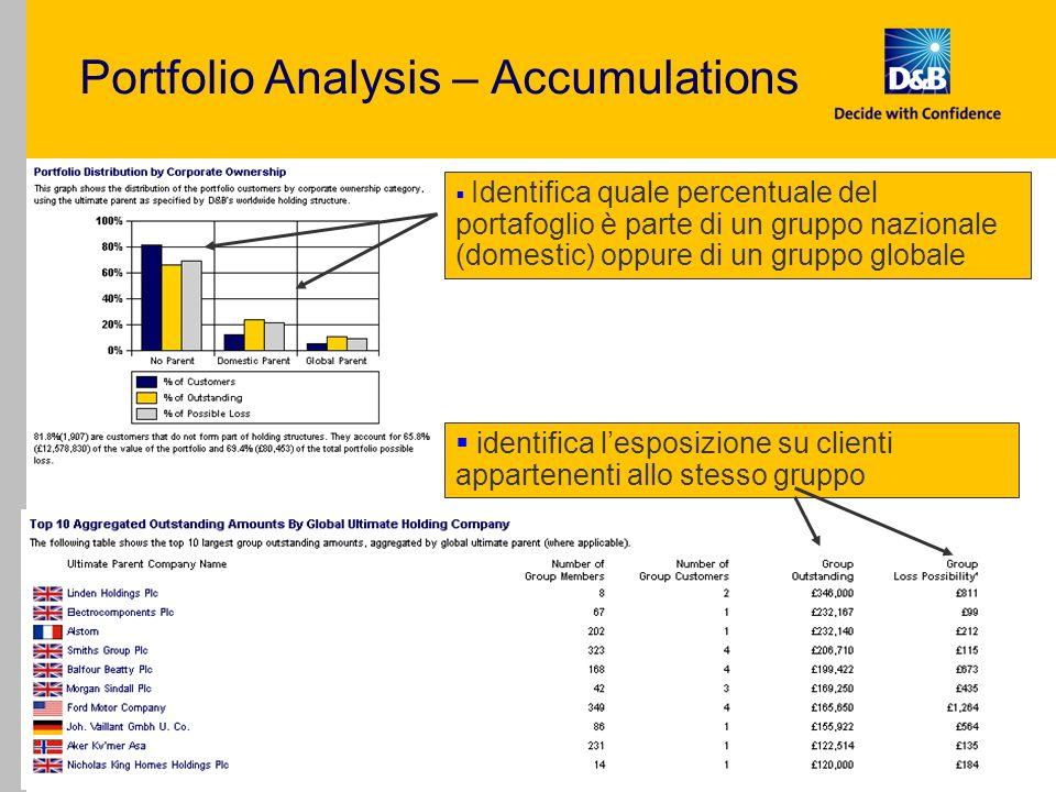 Portfolio Manager - External Presentation - V Draft 15 Portfolio Analysis – Accumulations Identifica quale percentuale del portafoglio è parte di un g