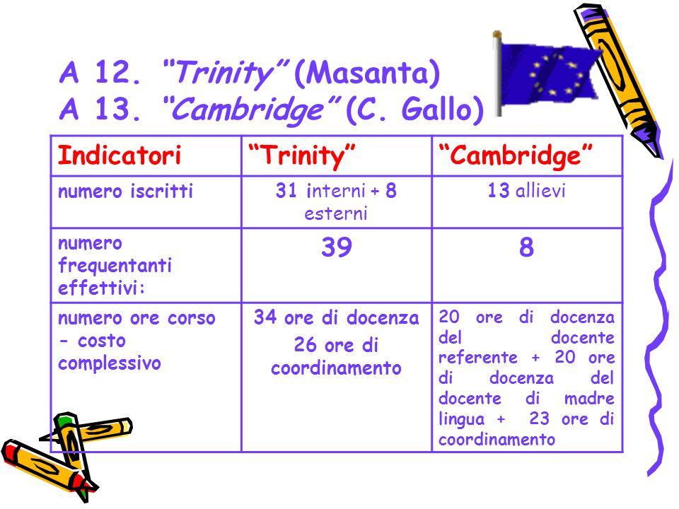 A 12. Trinity (Masanta) A 13. Cambridge (C. Gallo) IndicatoriTrinityCambridge numero iscritti31 interni + 8 esterni 13 allievi numero frequentanti eff