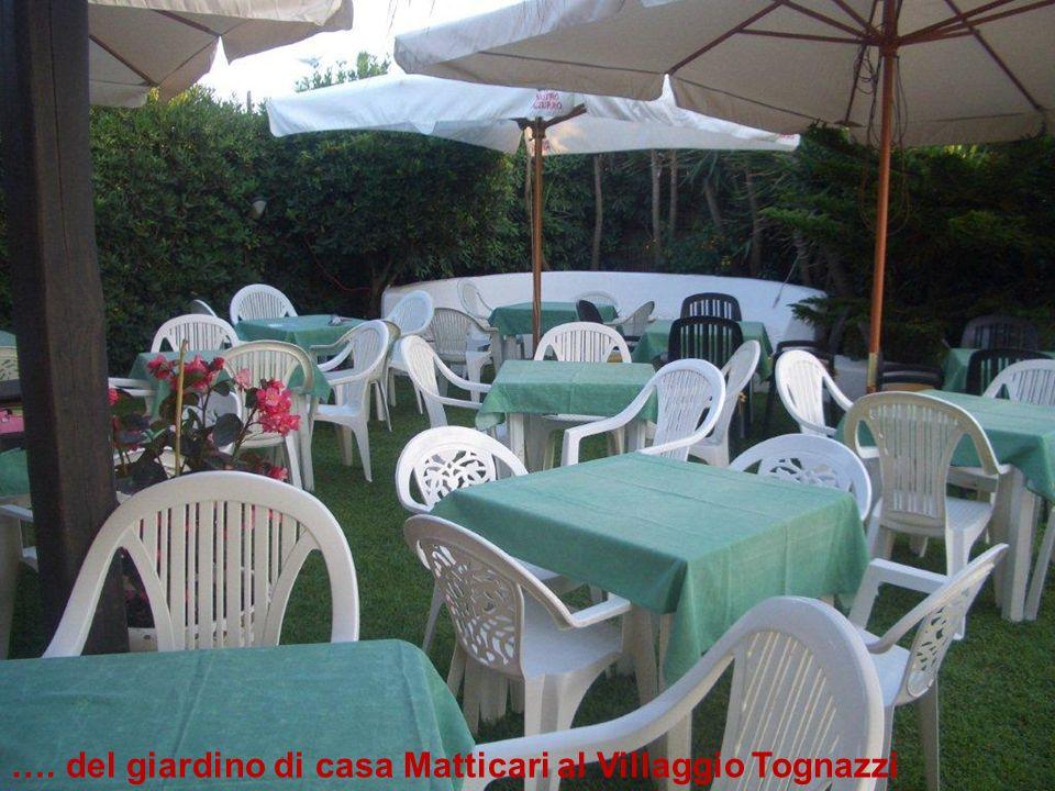 …. del giardino di casa Matticari al Villaggio Tognazzi