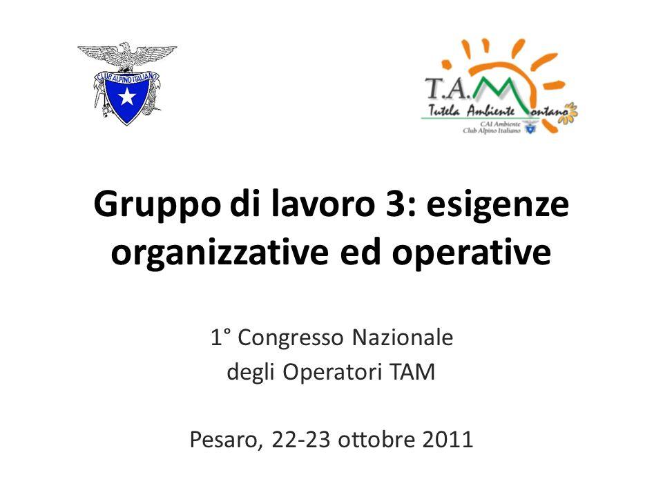 Gruppo di lavoro 3: esigenze organizzative ed operative 1° Congresso Nazionale degli Operatori TAM Pesaro, 22-23 ottobre 2011