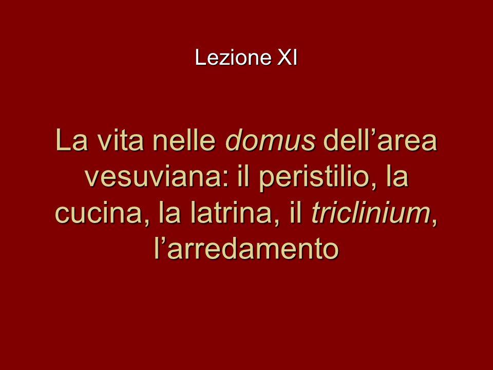 La vita nelle domus dellarea vesuviana: il peristilio, la cucina, la latrina, il triclinium, larredamento Lezione XI
