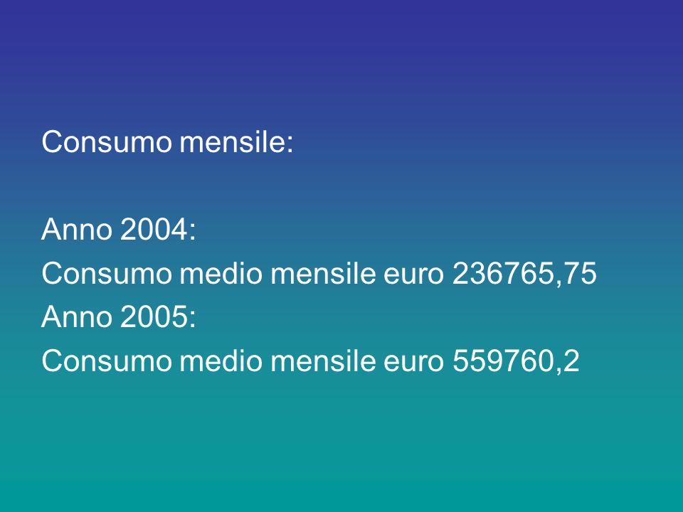 Consumo mensile: Anno 2004: Consumo medio mensile euro 236765,75 Anno 2005: Consumo medio mensile euro 559760,2