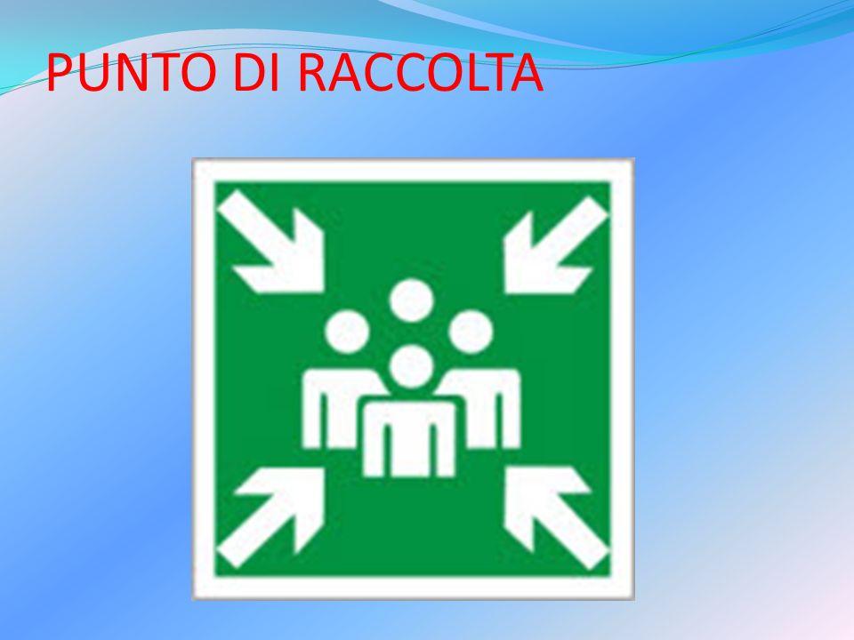 PUNTO DI RACCOLTA