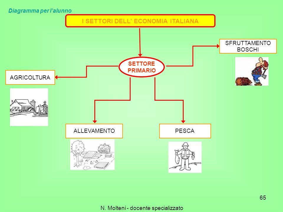I SETTORI DELL' ECONOMIA ITALIANA SETTORE PRIMARIO SFRUTTAMENTO BOSCHI PESCAALLEVAMENTO AGRICOLTURA 65 N. Molteni - docente specializzato Diagramma pe