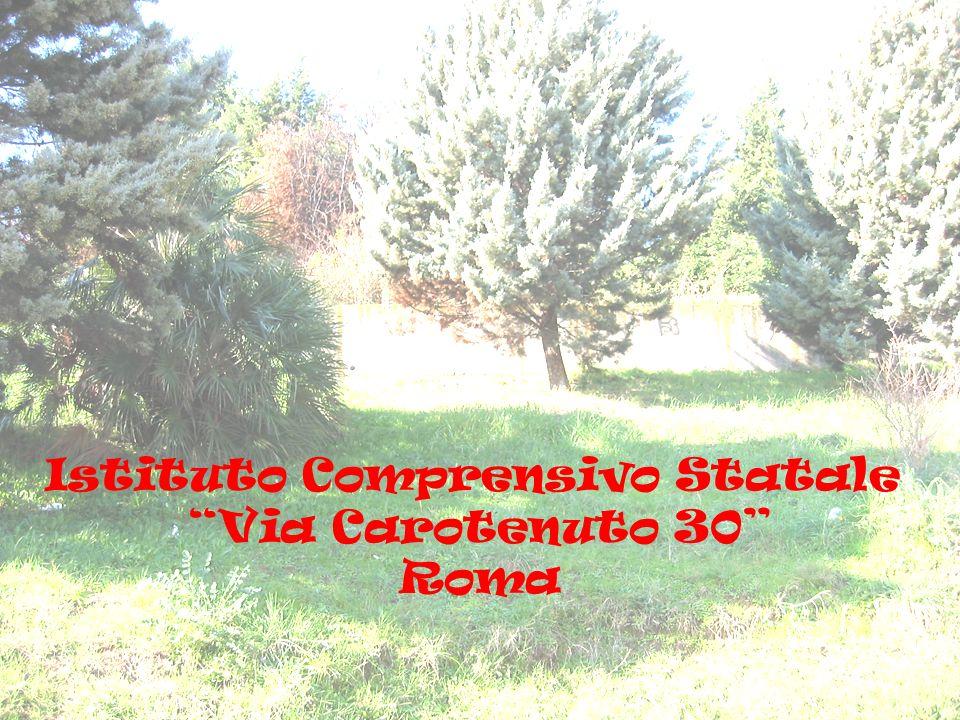Istituto Comprensivo Statale Via Carotenuto 30 Roma