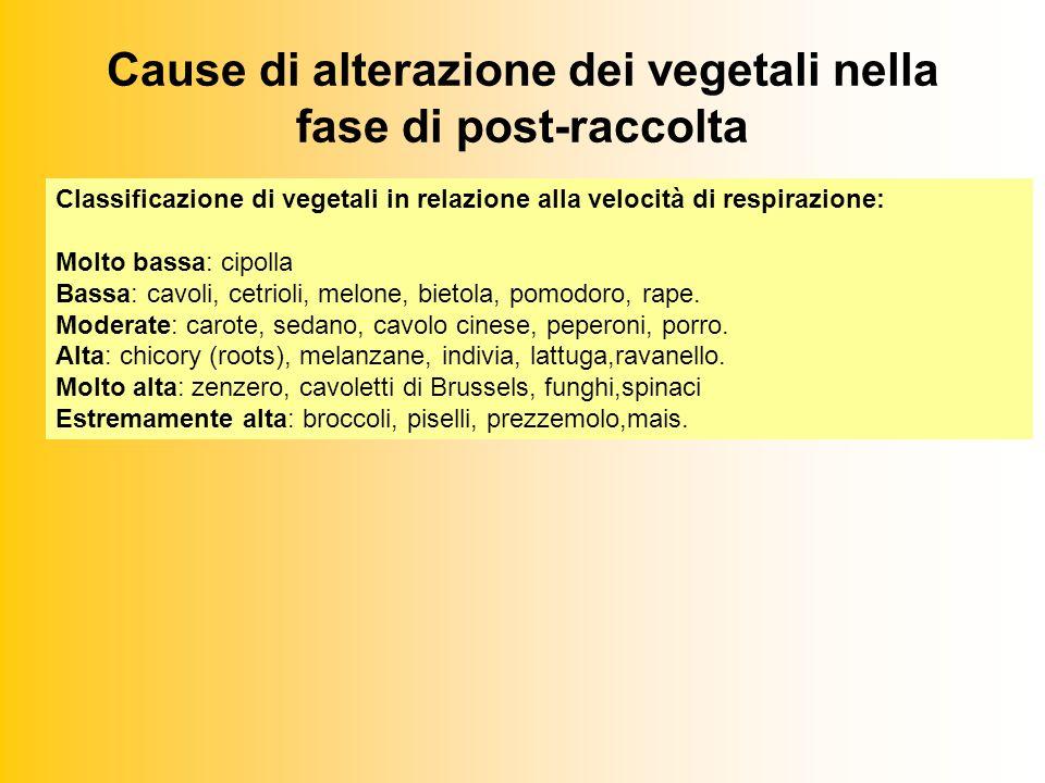 Cause di alterazione dei vegetali nella fase di post-raccolta Classificazione di vegetali in relazione alla velocità di respirazione: Molto bassa: cipolla Bassa: cavoli, cetrioli, melone, bietola, pomodoro, rape.