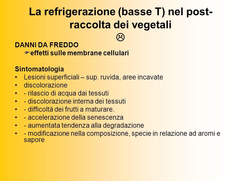 La refrigerazione (basse T) nel post- raccolta dei vegetali DANNI DA FREDDO effetti sulle membrane cellulari Sintomatologia Lesioni superficiali – sup.