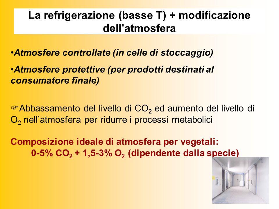 La refrigerazione (basse T) + modificazione dellatmosfera Atmosfere controllate (in celle di stoccaggio) Atmosfere protettive (per prodotti destinati al consumatore finale) Abbassamento del livello di CO 2 ed aumento del livello di O 2 nellatmosfera per ridurre i processi metabolici Composizione ideale di atmosfera per vegetali: 0-5% CO 2 + 1,5-3% O 2 (dipendente dalla specie)