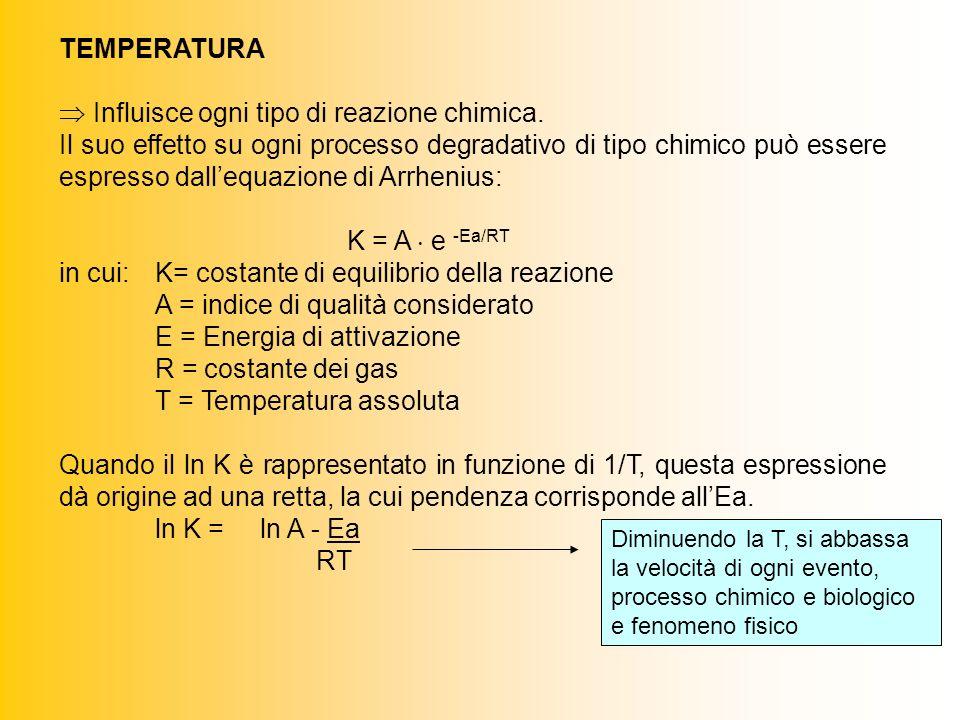 TEMPERATURA Influisce ogni tipo di reazione chimica.