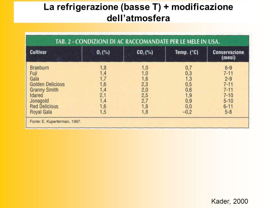 La refrigerazione (basse T) + modificazione dellatmosfera Kader, 2000