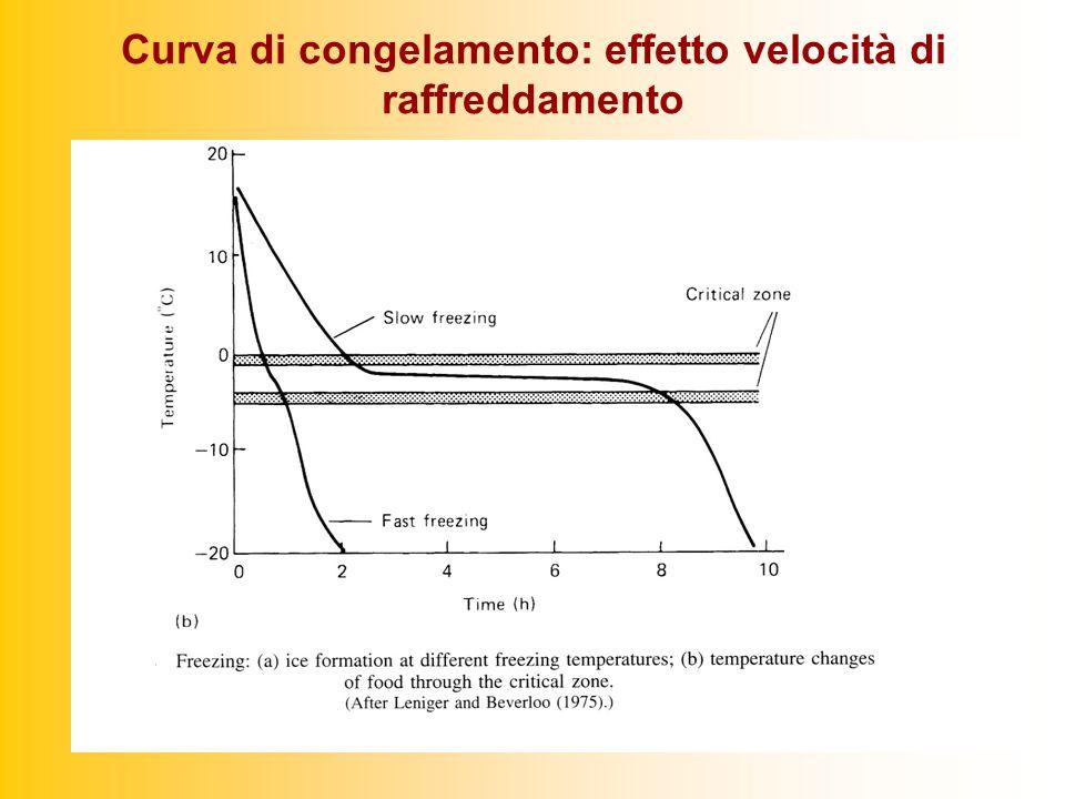 Curva di congelamento: effetto velocità di raffreddamento