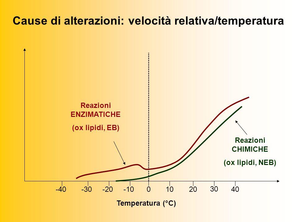 Cause di alterazioni: velocità relativa/temperatura 0-30-20-40-101020 30 40 Reazioni ENZIMATICHE (ox lipidi, EB) Reazioni CHIMICHE (ox lipidi, NEB) Temperatura (°C)