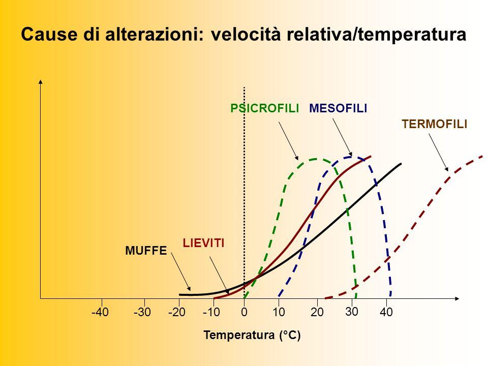 Cause di alterazioni: velocità relativa/temperatura 0-30-20-40-101020 30 40 MUFFE LIEVITI PSICROFILIMESOFILI TERMOFILI Temperatura (°C)