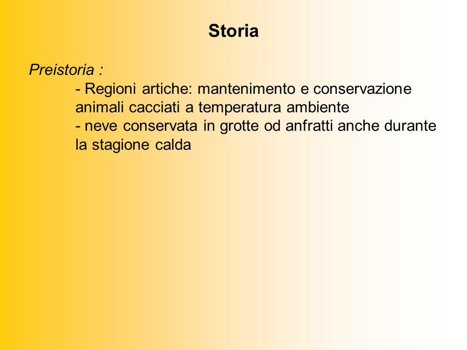 Storia Preistoria : - Regioni artiche: mantenimento e conservazione animali cacciati a temperatura ambiente - neve conservata in grotte od anfratti anche durante la stagione calda