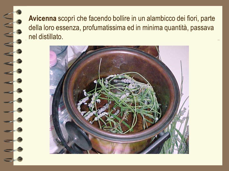 Avicenna scoprì che facendo bollire in un alambicco dei fiori, parte della loro essenza, profumatissima ed in minima quantità, passava nel distillato.