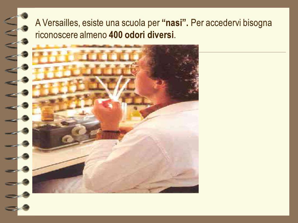 A Versailles, esiste una scuola per nasi. Per accedervi bisogna riconoscere almeno 400 odori diversi.