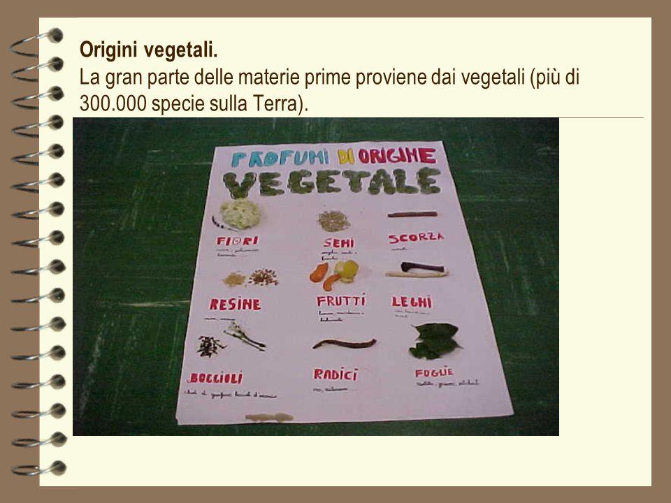 Origini vegetali. La gran parte delle materie prime proviene dai vegetali (più di 300.000 specie sulla Terra).