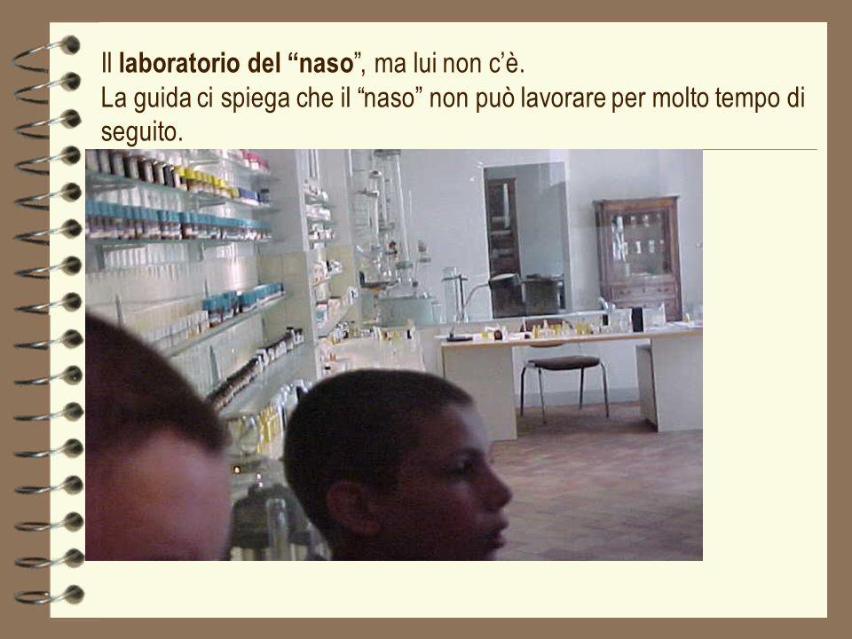 Il laboratorio del naso, ma lui non cè. La guida ci spiega che il naso non può lavorare per molto tempo di seguito.