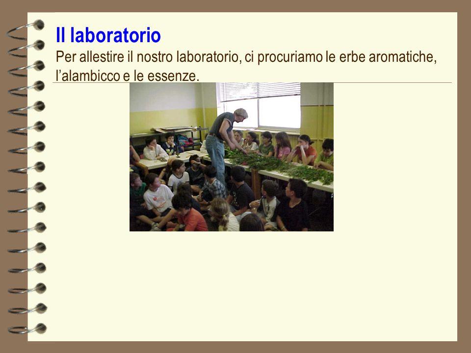 Il laboratorio Per allestire il nostro laboratorio, ci procuriamo le erbe aromatiche, lalambicco e le essenze.