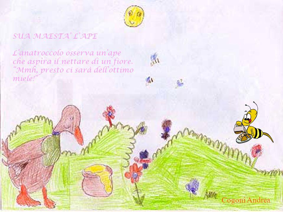SUA MAESTA LAPE Lanatroccolo osserva unape che aspira il nettare di un fiore. Mmh, presto ci sarà dellottimo miele! Cogoni Andrea