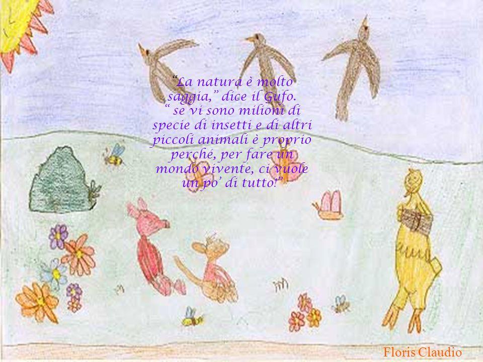La natura è molto saggia, dice il Gufo. se vi sono milioni di specie di insetti e di altri piccoli animali è proprio perché, per fare un mondo vivente
