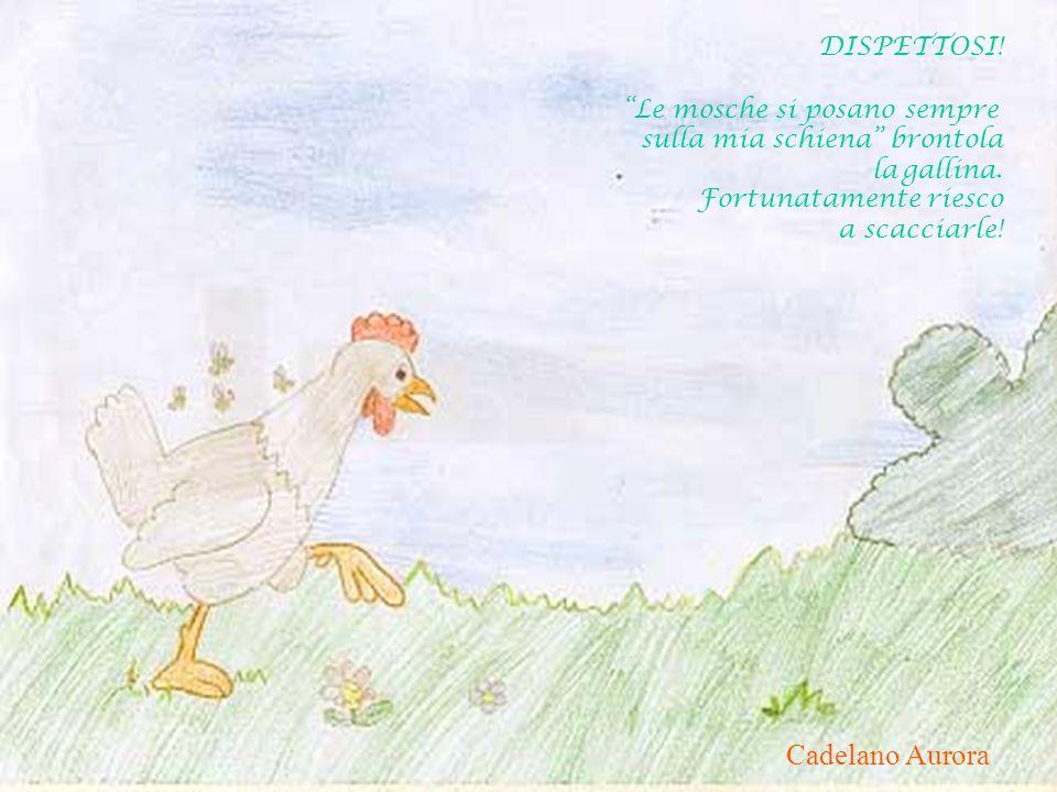 Floris Claudio