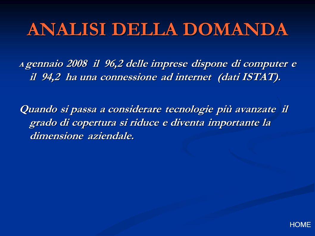 ANALISI DELLA DOMANDA A gennaio 2008 il 96,2 delle imprese dispone di computer e il 94,2 ha una connessione ad internet (dati ISTAT).