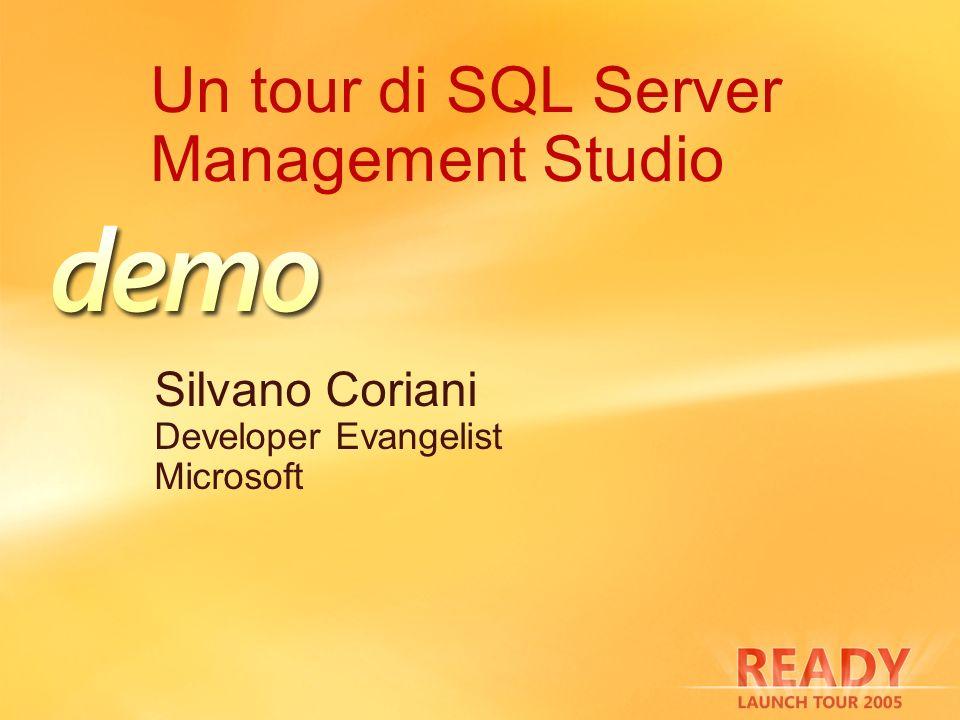 Dynamic Management View Viste logiche sulle strutture dati interne di SQL Server Punto di osservazione privilegiato sullo stato del sistema ServerComponenti dm_exec_* Connessioni e codice utente eseguito dm_os_* Memoria, locking e scheduling dm_tran_* Transazioni e isolamento dm_io_* I/O su rete e dischi dm_db_* Database e oggetti contenuti dm_repl_* Replica dm_broker_* SQL Service Broker dm_fts_* Full Text Search dm_qn_* Query Notification dm_clr_* Common Language Runtime