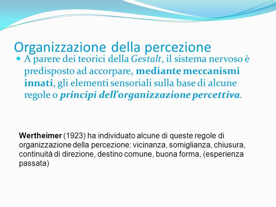Organizzazione della percezione A parere dei teorici della Gestalt, il sistema nervoso è predisposto ad accorpare, mediante meccanismi innati, gli ele