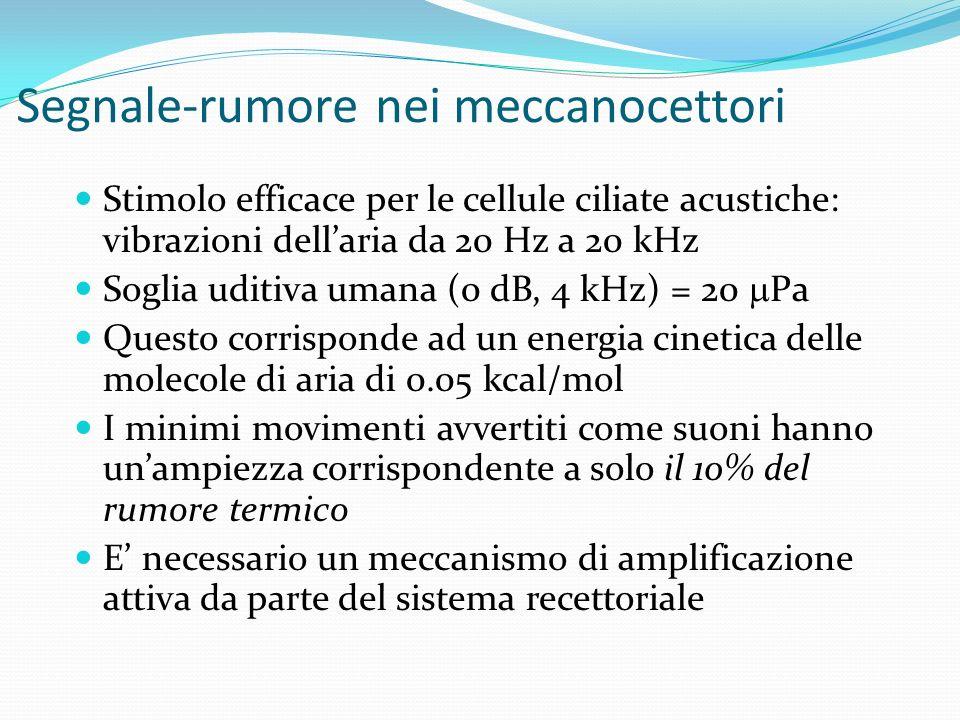 Segnale-rumore nei chemorecettori Stimolo efficace: legame chimico del recettore con la molecola segnale Legami chimici deboli (1 kcal/mol) Come disti