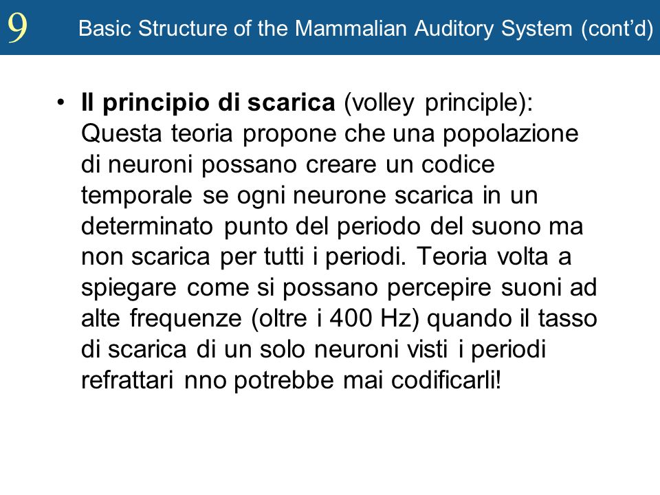 9 Basic Structure of the Mammalian Auditory System (contd) Il principio di scarica (volley principle): Questa teoria propone che una popolazione di ne